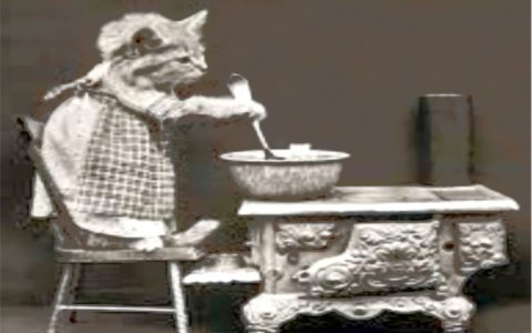 """LA CARA VECCHIA GATTA UN PO' SVITATA, la mia traduzione di """"The Old Gumbie Cat"""" di T.S. Eliot"""