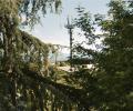 ELETTROSENSIBILITÀ lo spot di Officinemedia per la campagna d'informazione sui rischi per la salute legati alle radiazioni wireless